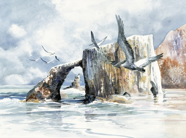 Anacapa Arch Channel Islands National Park watercolor painting Margy Gates
