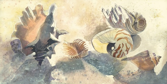 Fiji seashells beach watercolor painting