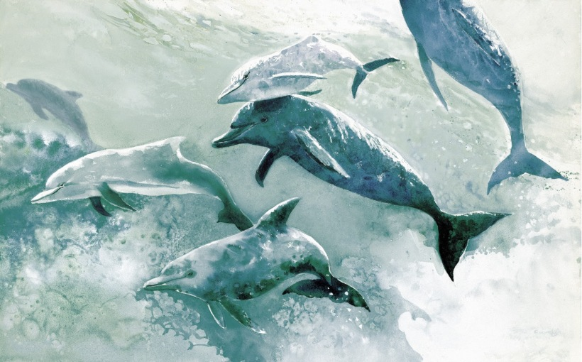 Blue dolphins watercolor painting Margy Gates